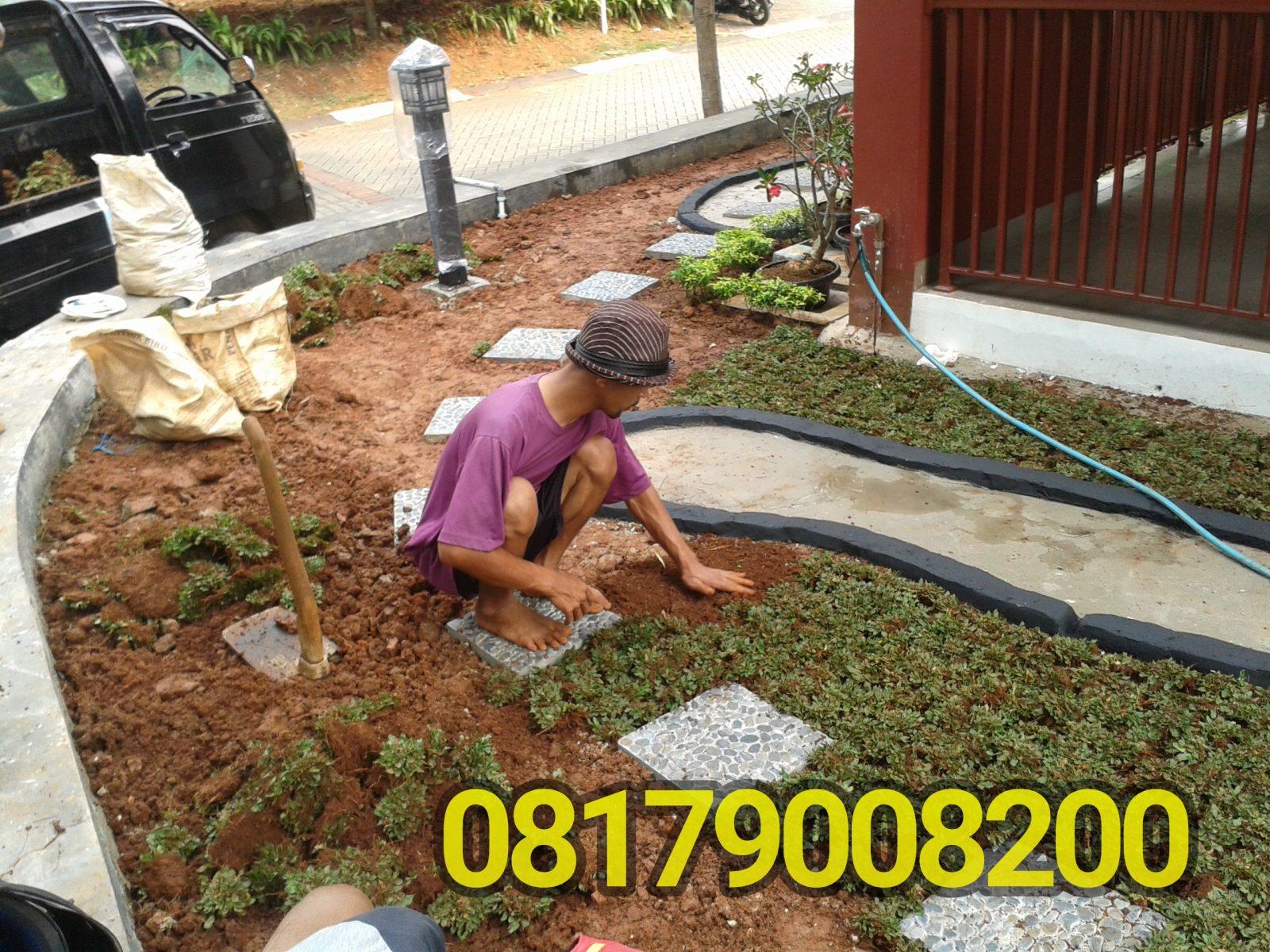 Tukang Taman Di Citra Grand